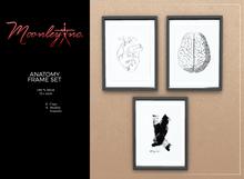 Moonley Inc. - Anatomy Frame Set