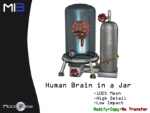 [MB3] Human Brain in a Jar