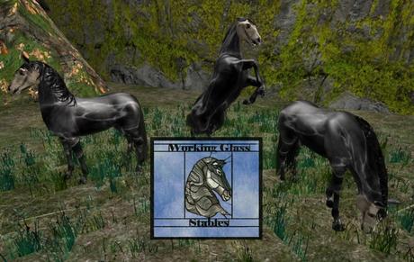 WGS Teegle skin Spookster- skull horse