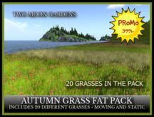 PROMO - TMG - AUTUMN GRASS FAT PACK - 20 GRASSES*