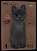 KittyCatS Box - ♀ New Born Kitten   Fur: Tonkinese - Blue Mink Tortie Eyes: Genesis Evergreen (Shape: Curious