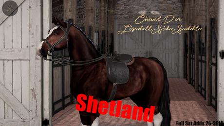 Cheval D'or / TeeglePet Shetland / Lisadell Sidesaddle Set.[B]