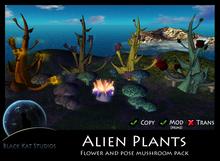 BKS Plants - Flower and Pose Mushroom Pack (Boxed)