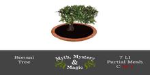 Myth, Mystery & Magic - Bonsai