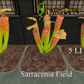 ThrivenRP Sarracenia Field