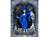 Aquarius canvas