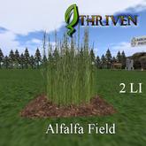 ThrivenRP Alfalfa Field