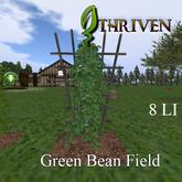 ThrivenRP Green Bean Field