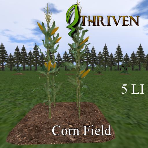 ThrivenRP Corn Field