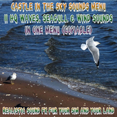 # Sounds Waves Seagull & wind FULL PERM