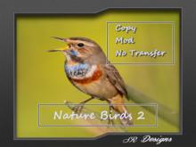 Nature Birds 2 Sound/COPY