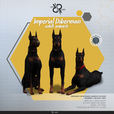 [REZZ ROOM] Pack IMPERIAL DOBERMAN ANIMESH (Companion)