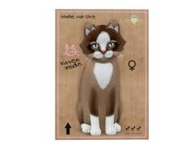 KittyCatS Box - 7T - F - Chateau Cat - Toffee Caramel
