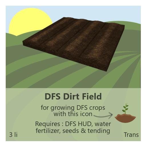 DFS Dirt Field