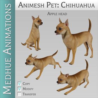 Medhue Animesh Pet Chihuahua - AppleHead