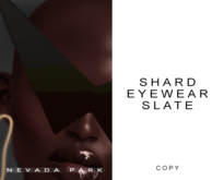 NEVADA PARK + Shard Eyewear Gift | Slate