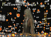 ~Hauntingly Halloween~Halloween Effects wear from inventory-Particles