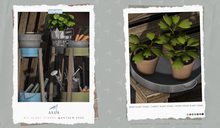 Ayla. DIY Plant Stands - Small Pot Tray (Add Me)