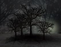 #Spooky Dark Forest 100% Mesh