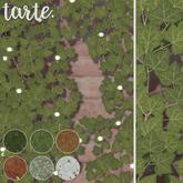 tarte. english ivy