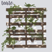 Tarte pallet planter mp 3%20walnut