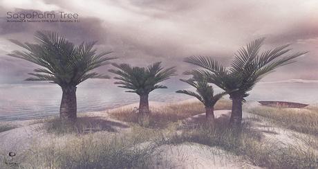 LB Sago Palm Tree Animated FatPack