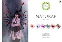 #LuluB! - Naturae.