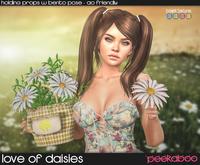Peekaboo - Love of Daisies