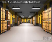 TROPIX // Modular School Corridor BackDrop 03 [BOX]