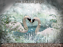 ❃Fantasy Forest Collection *☃* Winter Landscape in Diorama ~ Swan Couple