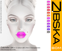 Zibska BOM Pack ~ Gabrielle Lips in 12 colors with 2 fits in 3 transitions