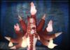 Kitsunebi fire no text