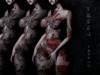 Samurai Tattoo - Coloured, Fatpack, Maitreya, Legacy, INTHIUM KUPRA, Belleza, Signature, Omega, BOM - Vezzo Ink