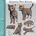 Medhue Animesh Pet Kitten