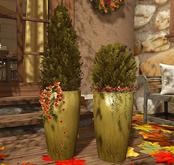CJ Evergreen Autumn + Berrys in ceramic Planter 2er - Box add