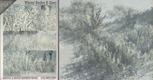 -Hisa- Snow Grass and Bushes