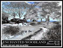 TMG - ENCHANTED WOODLAND IN WINTER* Large Open Forest