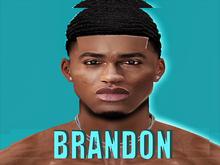 """Brandon Skin """"MR9"""""""