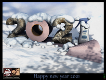 (*.*) Happy New Year 2021