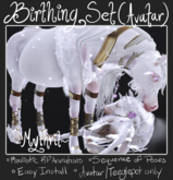 ~Mythril~ TEEGLEPET FOAL: Birthing Sequence (Avatar)