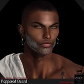 ::: Core ::: Peppered Beard (boxed)