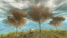 LB Acer Campestre Tree v2 Animated 4 Seasons