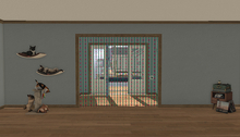 AfterImage Design Tortuga Front Door Wall Boxed