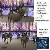 Reindeer Calls ~The Road Block~-BOX