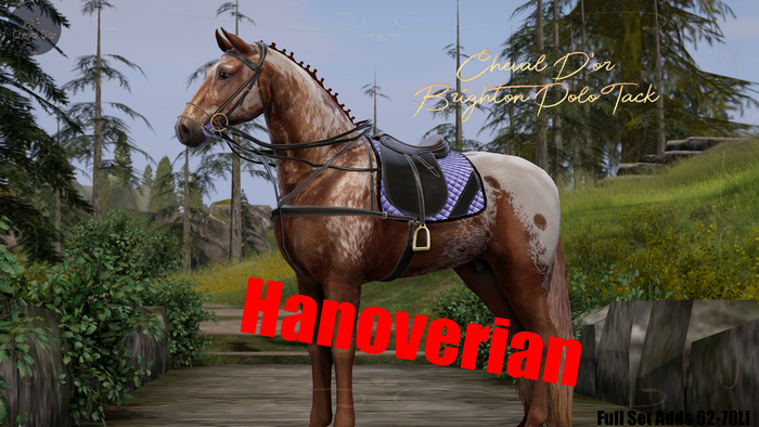 Cheval D'or / TeeglePet Hano / Brighton Polo Tack Set.