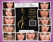 24 ADVENT CALENDAR GIFTS in a box
