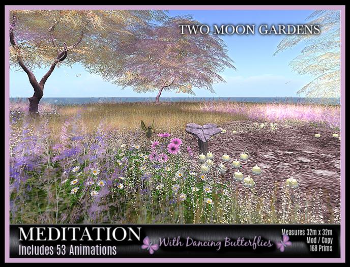 TMG - MEDITATION* Fantasy Landscaped Garden