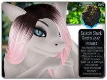 .:C:. Selachi - Female Bento Shark Head