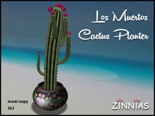 Zinnias Los Muertos Cactus Planter