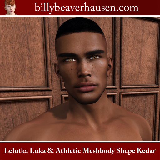 Lelukta Luka & Athletic Meshbody Shape Kedar